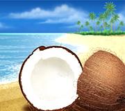 coconut beachs tour