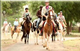 horse savari india tour