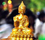Buddha India Tour