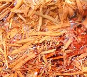 spices sandalwood tour
