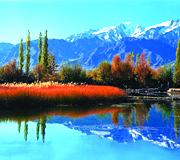 Srinagar India Tour