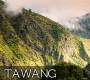 Tawang wildlife india tour