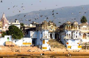 pushkar rajasthan india tour