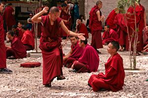 Monks Debate Himachal Pradesh