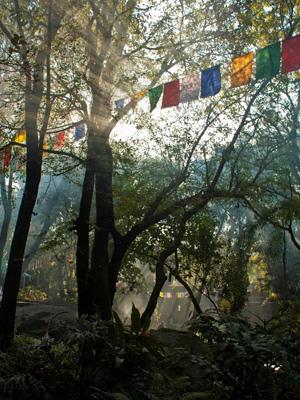 tibetan-art-institute
