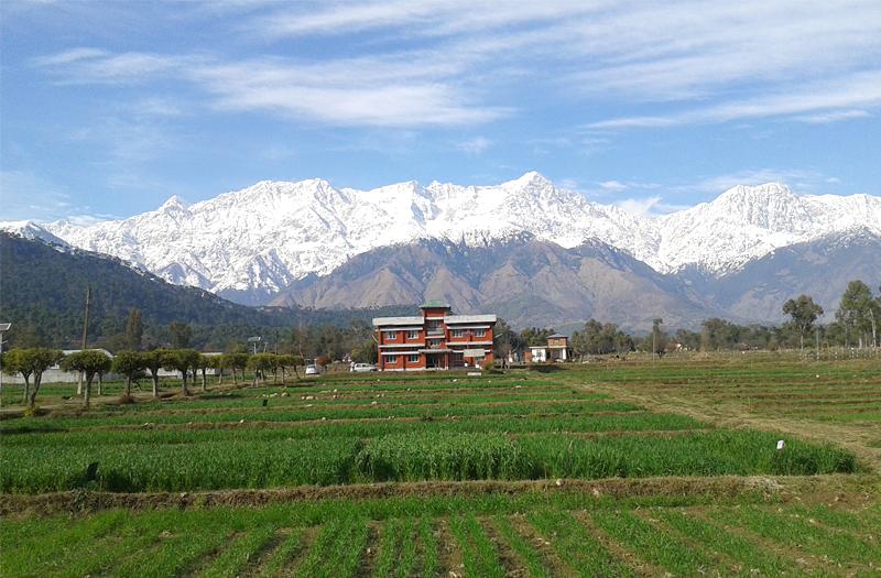 Dhauladhar Range Kangra Valley Himachal Pradesh
