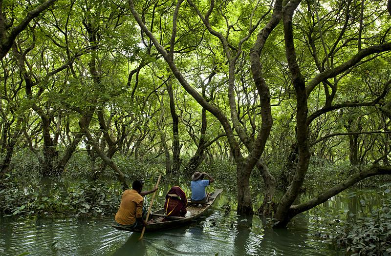 Sundarban National Parks West Bengal