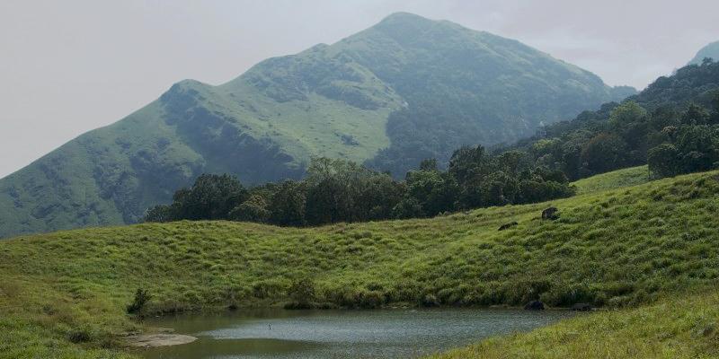 chembra Peak Wayanad Kerala