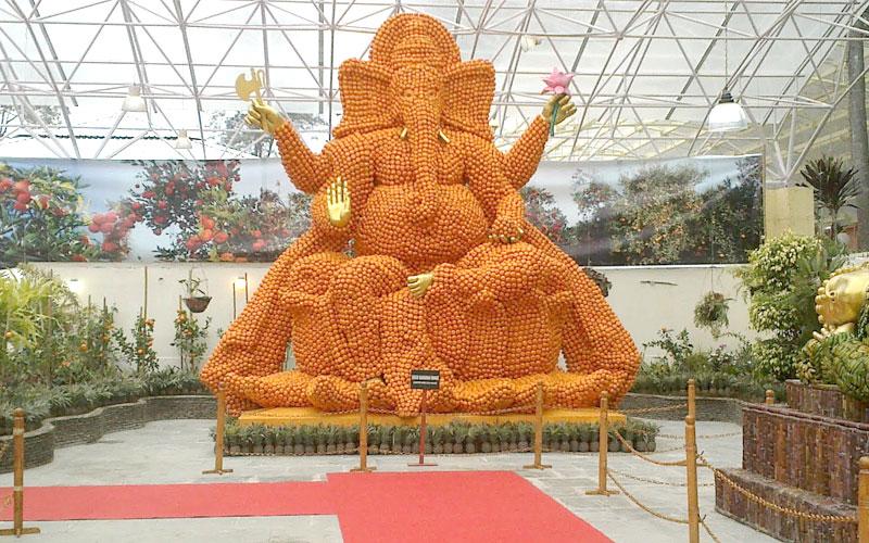 lord-ganesh-made-of-oranges-at-saramsa-garden-gangtok