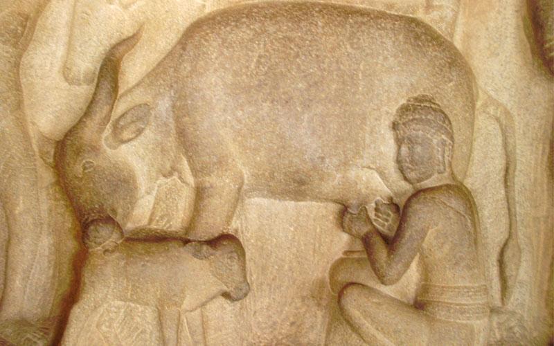 arjunas-penance-mahabalipuram