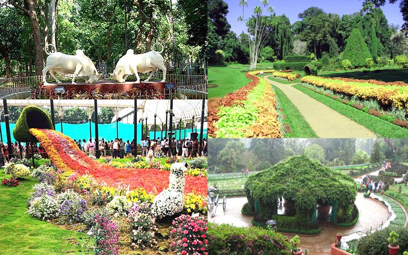 botanical-garden-pondicherry