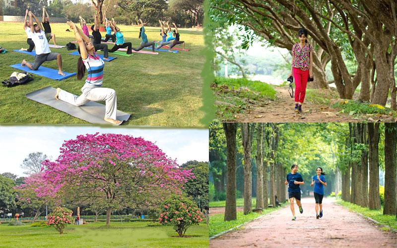 cubbon-park-bangalore