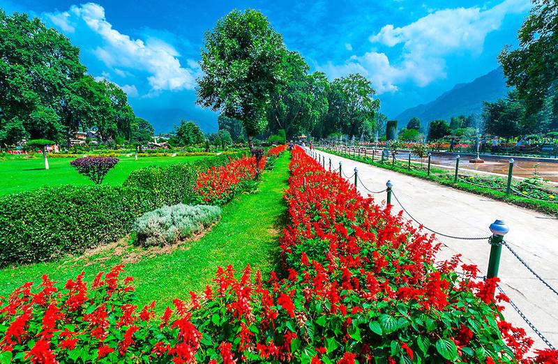 shalimar-bagh-a-mughal-gardensri-nagar