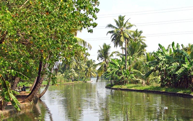 kozhikode backwaters india