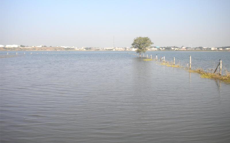 lal pari lake in rajkot india
