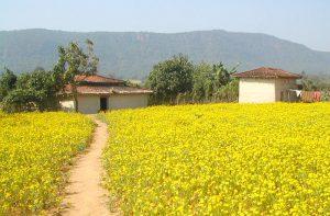 bokaro-jharkhand-india