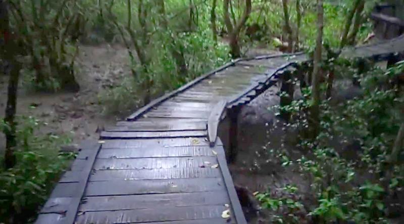 coringa-sanctuary-india
