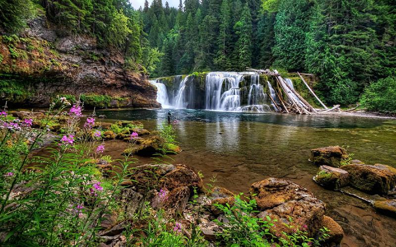 agumbe-waterfalls-karnataka-india