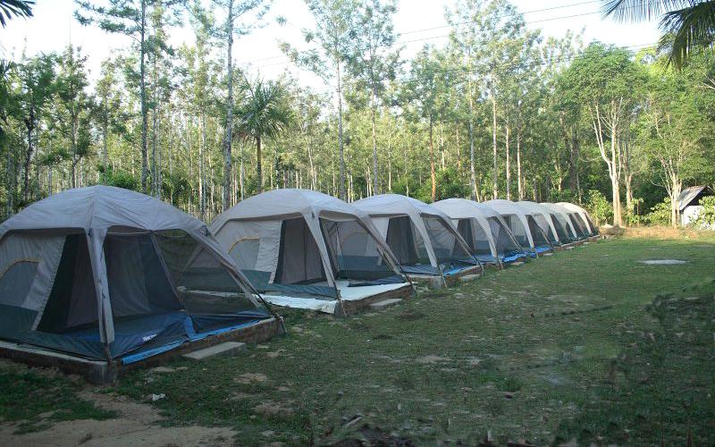 bandipur-camping-india