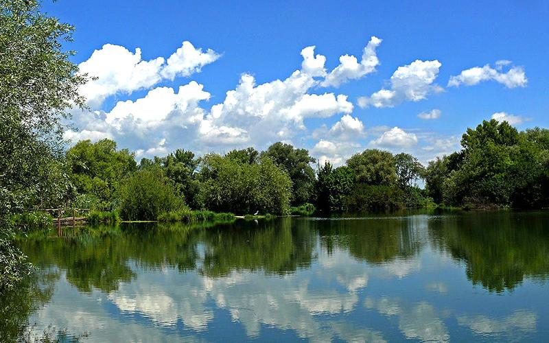 lake-in-kolar-india