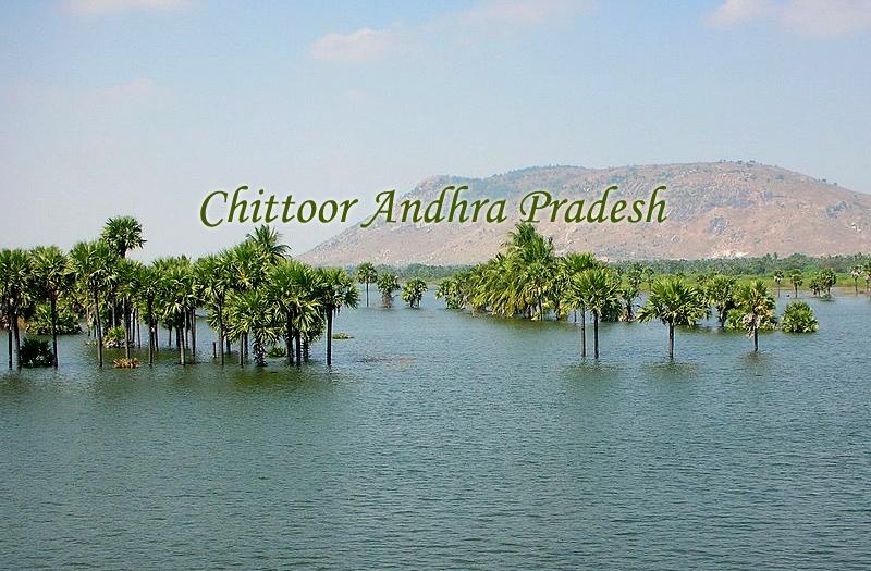Chittoor Andhra Pradesh
