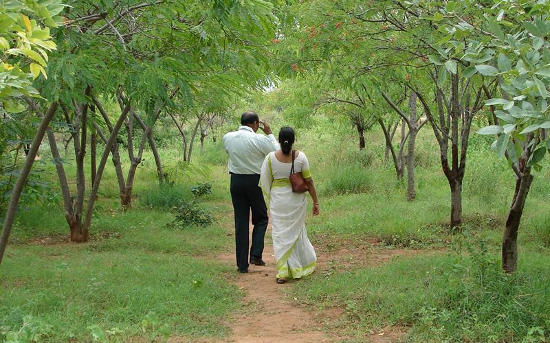 konaseema-andhalu-india