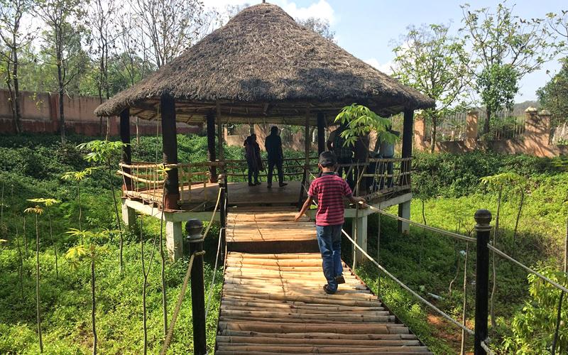 nature-park-yelagiri-hills-india