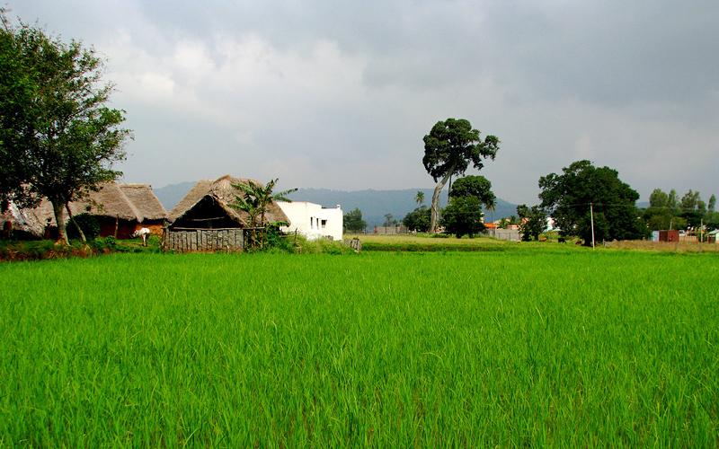 nilavoor-tribal-village-india