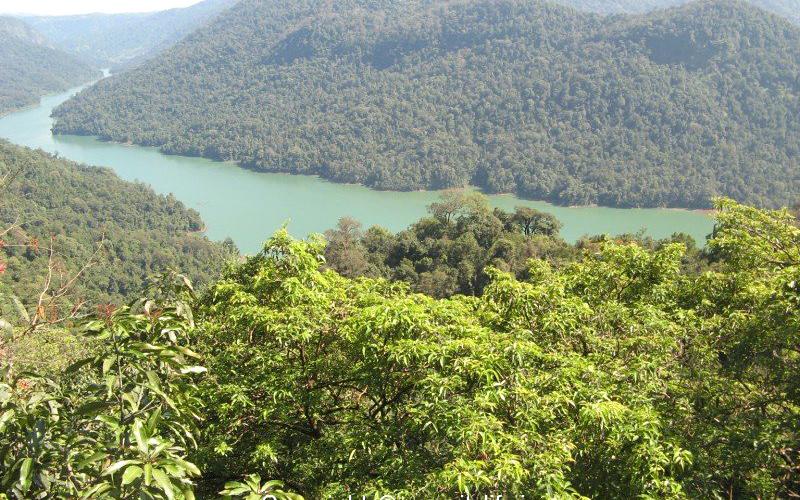 sharavathi-river-valley-india