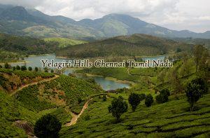 yelagiri-hills-tamil-nadu-india