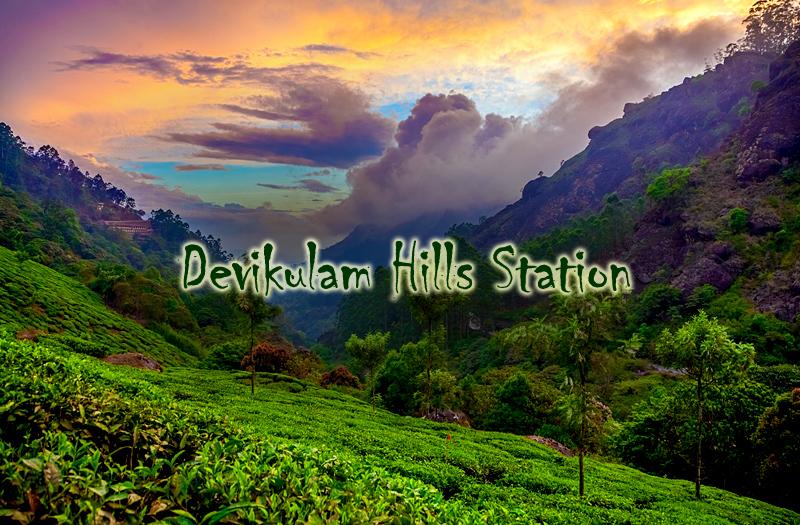 devikulam-hill-station-kerala-india