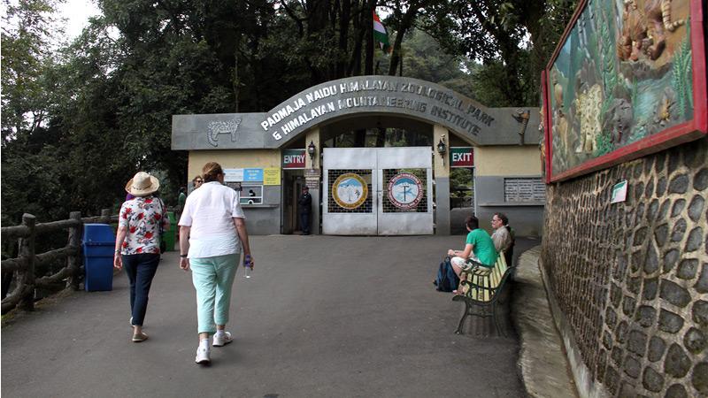 himalayan-zoological-park-sikkim