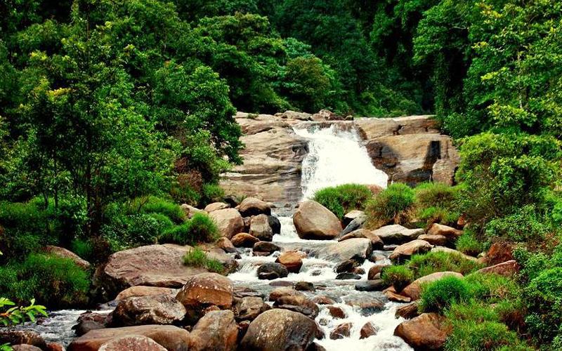 monkey-falls-india