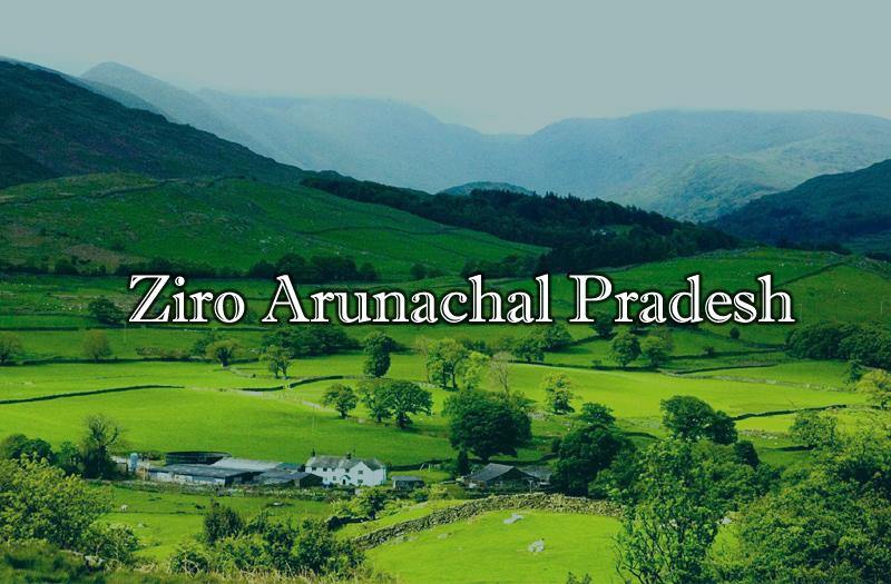 ziro-arunachal-pradesh-india