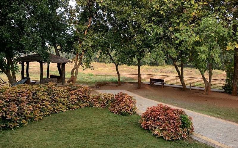 gardens-near-mandvi-beach-india