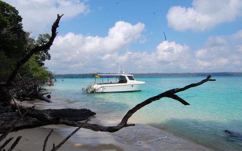inglis-island-india