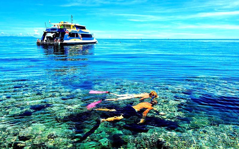 ocean-tribe-scuba-india
