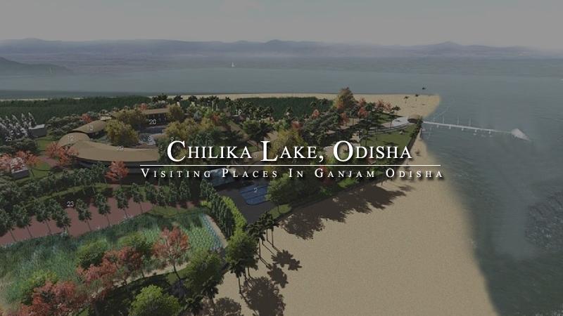 chilika-lake-odisha-india