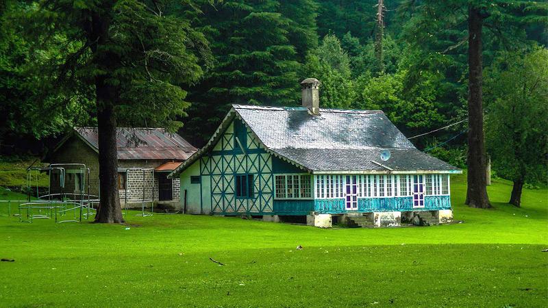 deodar-forest-himachal