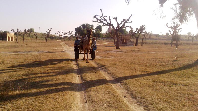 kanhaiyalal-bagla-haveli-desert