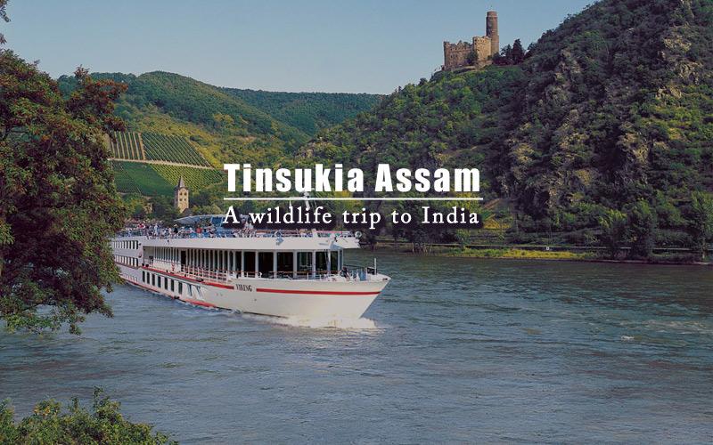 tinsukia-assam-india
