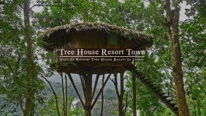 tree-house-resort-jaipur-india
