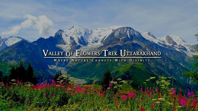Valley of Flowers Trek Uttarakhand
