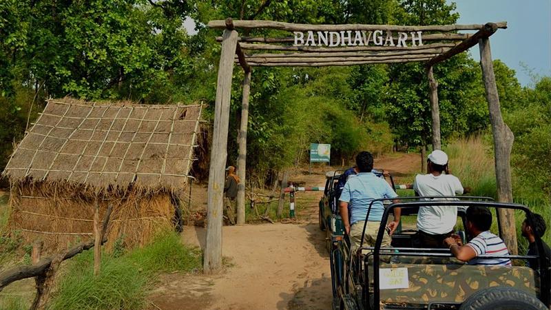 bandhavgarh-india