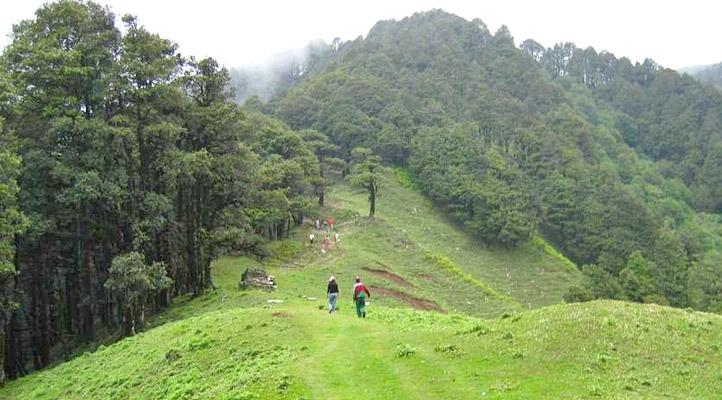 jalori-pass-himachal-pradesh